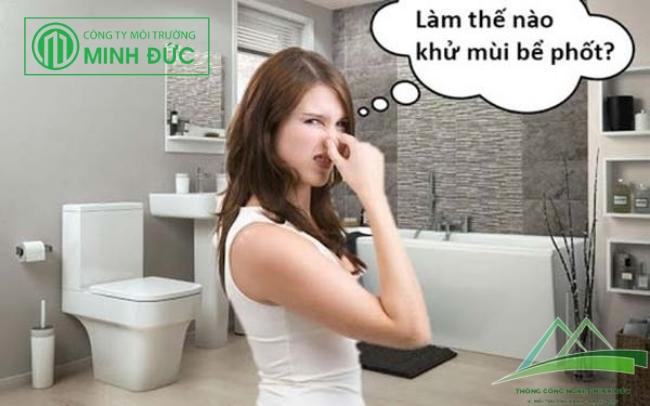 Tác dụng của việc trồng cây xanh trong nhà vệ sinh